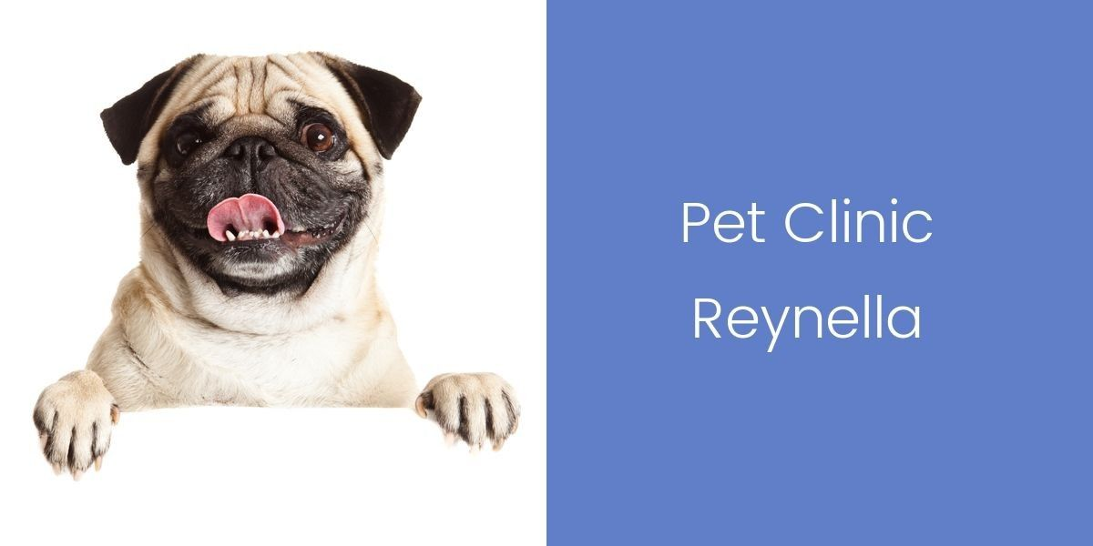 _Pet-Clinic-Reynella